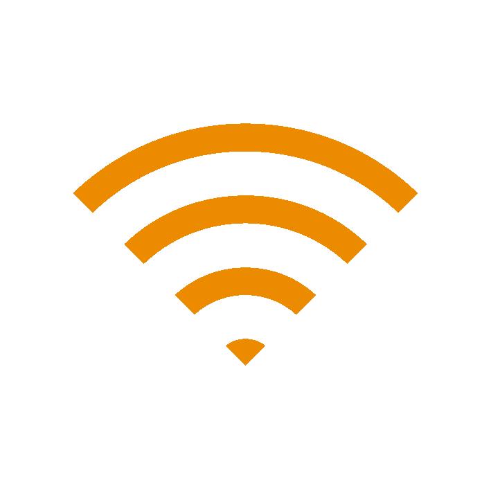 100 MBit/s Internet